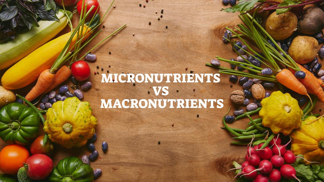 Micronutrients vs Macronutrients