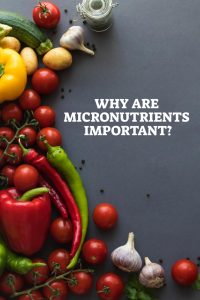 Why Are Micronutrients Important - Pin