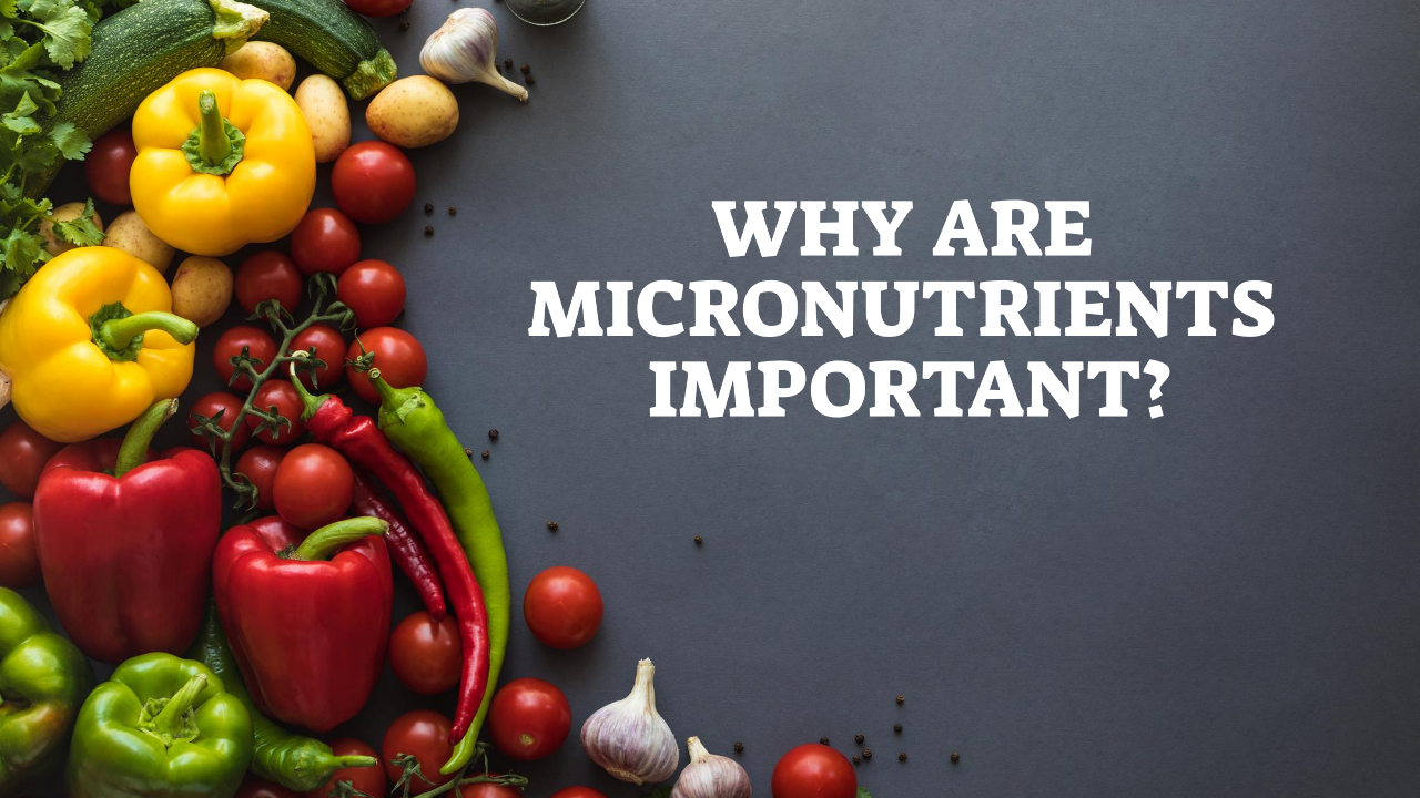 Why Are Micronutrients Important